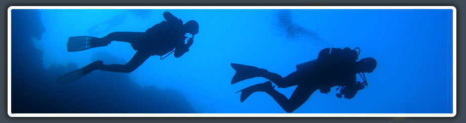 scuba divers in Moalboal enjoying their dive